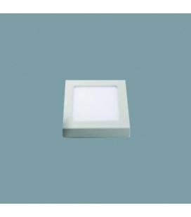 RAIG CL-040208